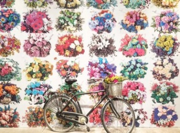 With Flowers :: Ai Wei Wei :: Andy Warhol Museum :: Pittsburgh :: PA