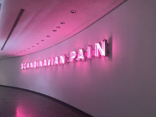Scandinavian Pain :: Ragnar Kjartansson :: Hirshhorn Museum & Sculpture Garden :: Washington :: DC