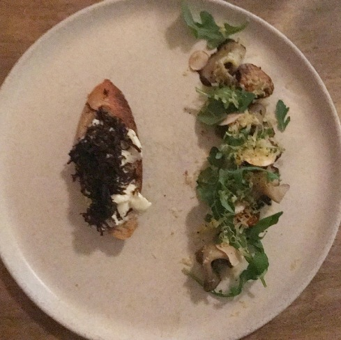 The Life of a Mushroom :: Ambra :: Philadelphia :: PA