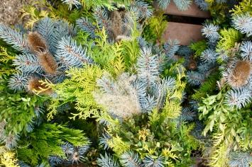 Wreaths :: Terrain :: Glen Mills :: PA