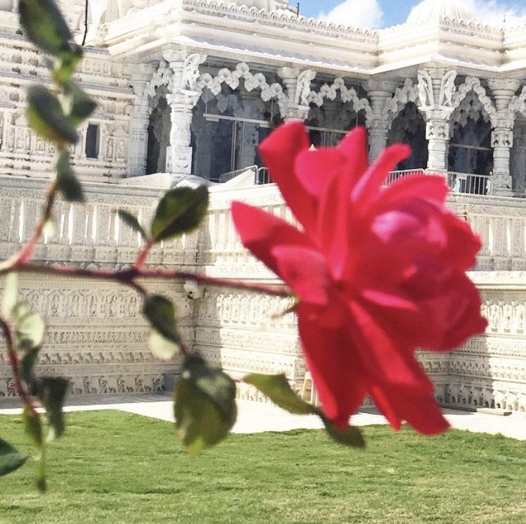 BAPS Shir Swaminarayan Mandir :: Stafford :: TX