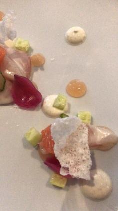 Hamachi with grapefruit, fennel, cucumber, Yumi kosho :: Bouillon Bilk :: Montréal